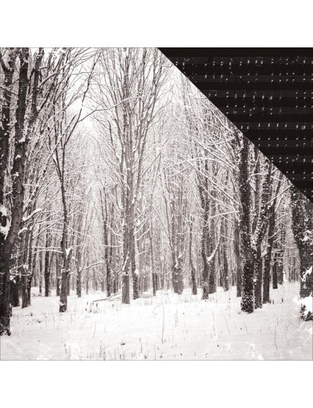 "Snowcapped Paper - ""Christmas Edition"", Kaisercraft"