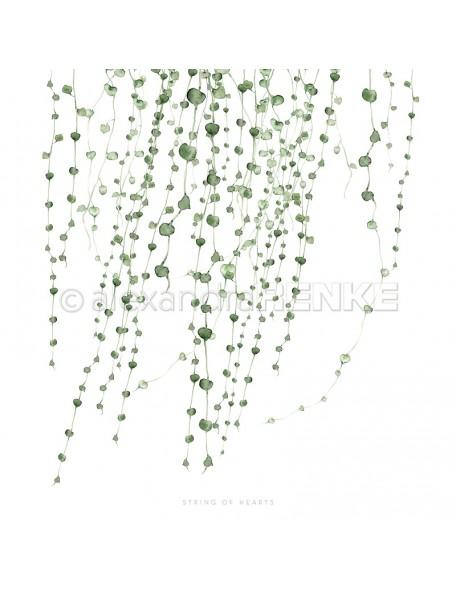 Alexandra Renke Cardstock de una cara 30,5x30,5 cm, Cadena de Corazones/String of hearts