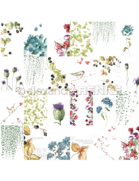 Alexandra Renke Cardstock de una cara 30,5x30,5 cm, Tarjetas Flores Otoño/Kärtchenbogen Blumen Herbst
