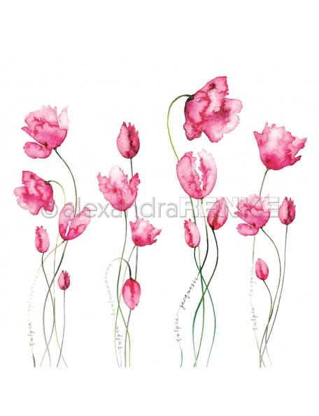 Alexandra Renke Cardstock de una cara 30,5x30,5 cm, Variedad Tulipanes Rosa/Viele Tulpen pink