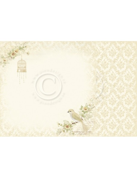 "Pion Design The Songbird's Secret Cardstock de doble cara 12""x12"", Perching bird"