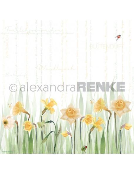 Alexandra Renke Cardstock de una cara 30,5x30,5 cm, Narciso/Narzissen