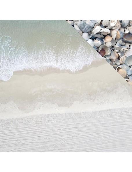 """Kaisercraft Beach Shack Cardstock de doble cara 12""""X12"""", Collecting"""
