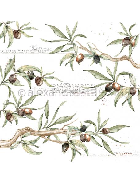 Alexandra Renke Cardstock de una cara 30,5x30,5 cm, Rama de Olivo/Olivenzweige