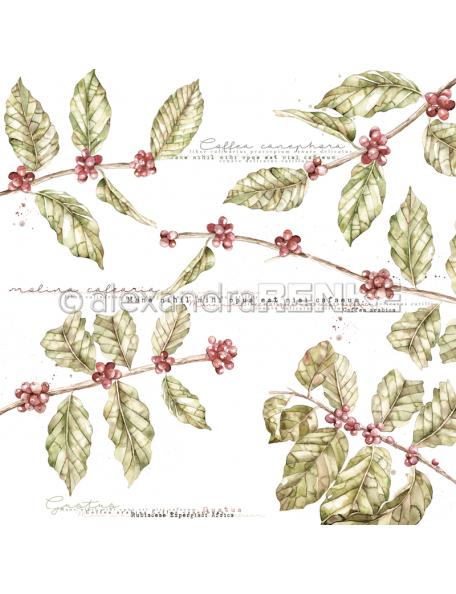 Alexandra Renke Cardstock de una cara 30,5x30,5 cm, Planta de Cafe/Kaffeepflanze