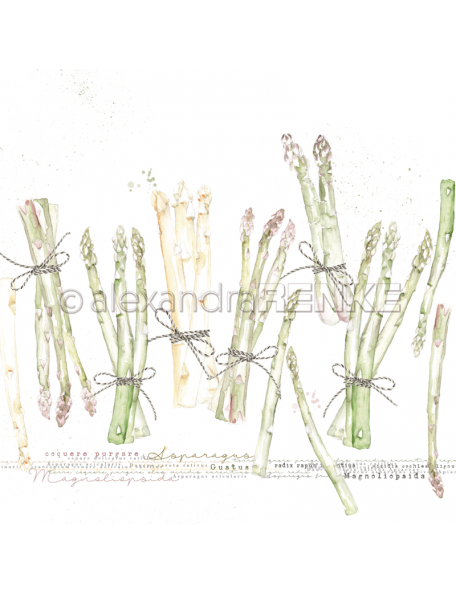 Alexandra Renke Cardstock de una cara 30,5x30,5 cm, Esparrago/Spargel