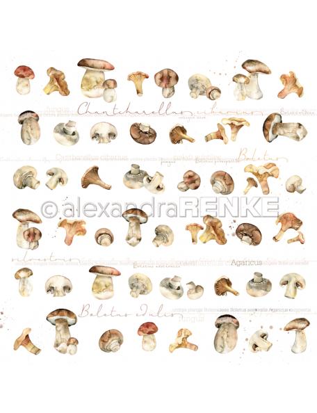 Alexandra Renke Cardstock de una cara 30,5x30,5 cm, Setas/Pilze