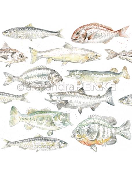 Alexandra Renke Cardstock de una cara 30,5x30,5 cm, Peces Coloreados/Farbige Fische