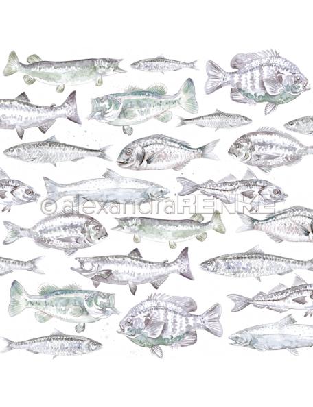 Alexandra Renke Cardstock de una cara 30,5x30,5 cm, Peces Azulados/Bläuliche Fische