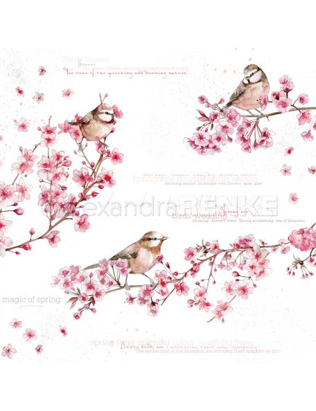 Alexandra Renke Cardstock de una cara 30,5x30,5 cm, Pajaros en Flores de Cerezo/Magic of Spring