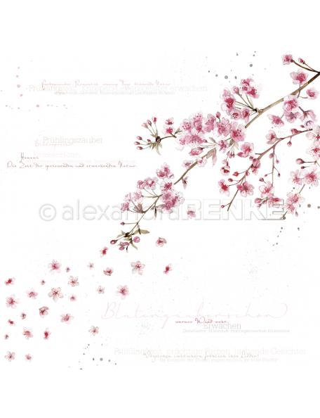 Alexandra Renke Cardstock de una cara 30,5x30,5 cm, Blütenzauberschön