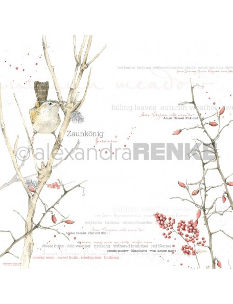 Alexandra Renke Cardstock de una cara 30,5x30,5 cm, Aquarell Vogel/Pajaro Aquarela