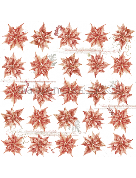 Alexandra Renke Cardstock de una cara 30,5x30,5 cm, Christmas Rose Rapport