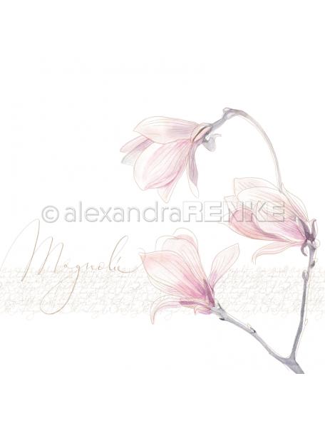 alexandra renke cardstock de una cara 30,5x30,5cm, magnolia grande/Große Magnolie
