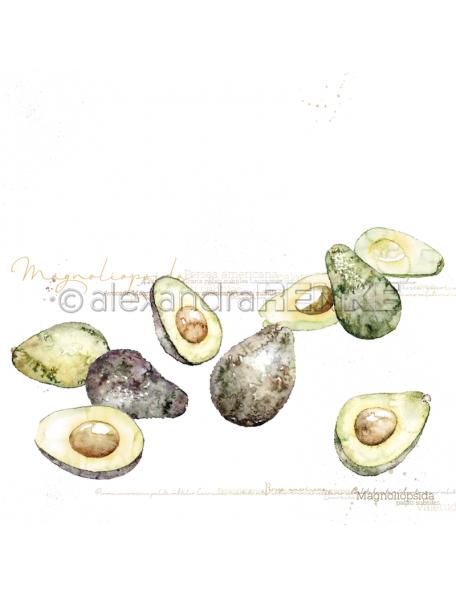 Alexandra Renke Cardstock una cara 30,5x30,5 cm, Aguacate/Avocato