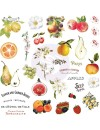 Prima Marketing Fruit Paradise Recortes y Pegatinas/Ephemera W/Stickers 70