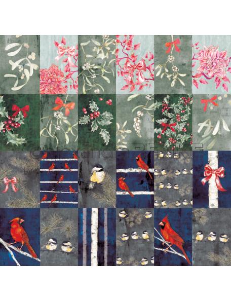 Alexandra Renke Cardstock una cara 30,5x30,5 cm, Kärtchenbogen Winterbirds