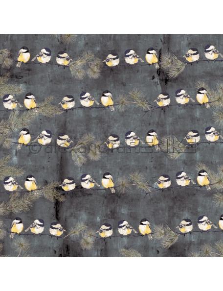 Alexandra Renke Cardstock una cara 30,5x30,5 cm, Winterbirds Kohlmeise Rapport