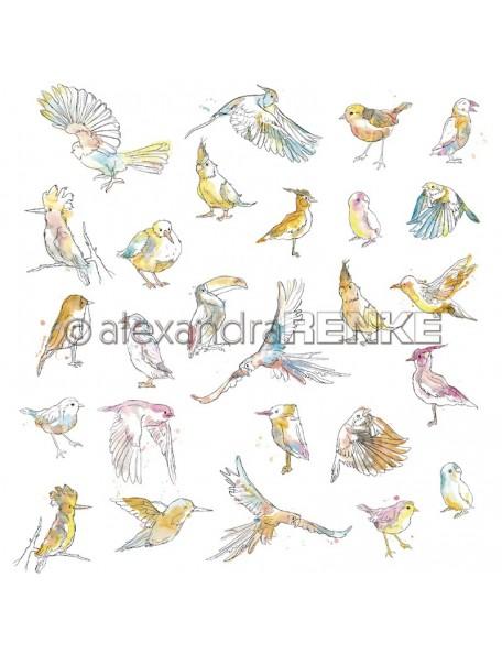 Alexandra Renke Paradies paradiesische Vögel