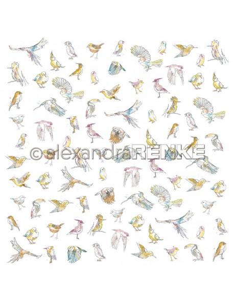Alexandra Renke Paradies viele verschiedene Vögel