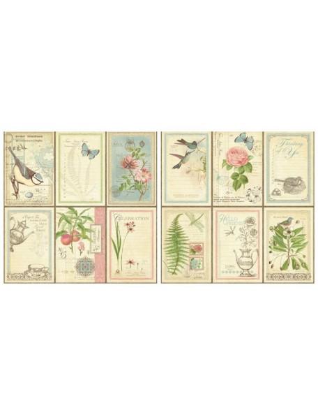 Graphic 45 Botanical Tea, Love Notes