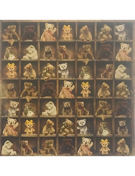 "Collection Paper - ""Teddy Bear's Picnic"", Kaisercraft"