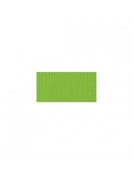"American Crafts Textured Cardstock 12""X12"", Cricket"