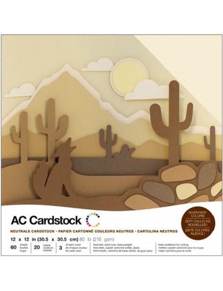 "American Crafts - Neutrals Variedad Pack de Cardstock 12""x12"""