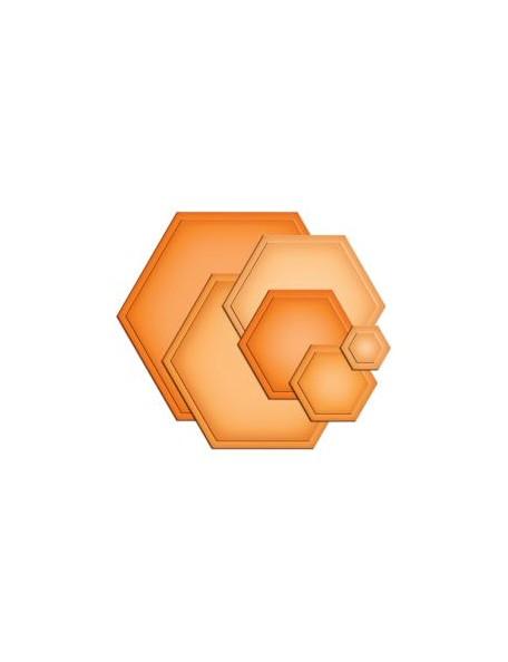 Spellbinder - Hexagon Troquel Nestabilies
