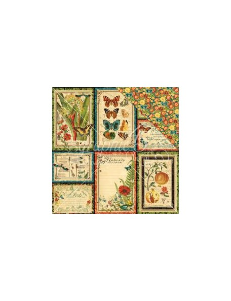 "Graphic 45 Nature Sketchbook Cardstock de doble cara 12""X12"", Beautiful World"