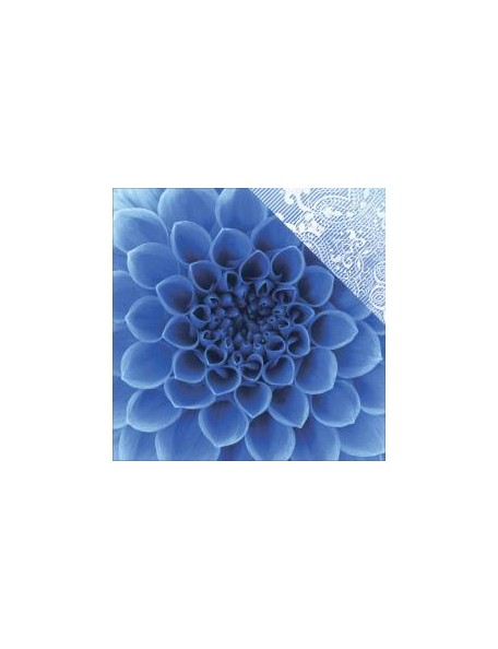 "Paper House ColorWays Sapphire Cardstock de doble cara 12""X12"", Dahlia"